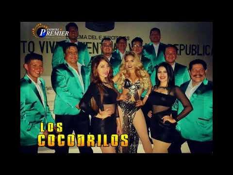Los Cocodrilos - El Negro del Whatsapp