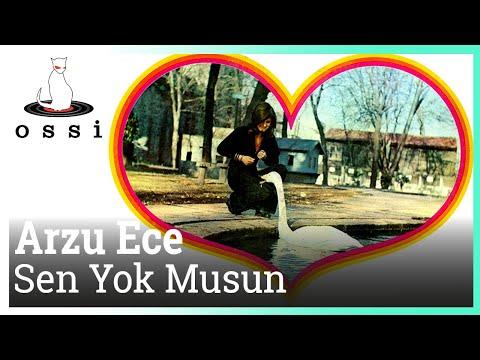 Arzu Ece - Sen Yok Musun