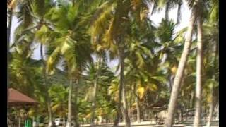 plages de LA DESIRADE 3
