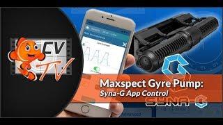 Maxpect Gyre Pump: Syna-G Control