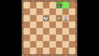 Chess Endgames- Checkmate with Two Bishops