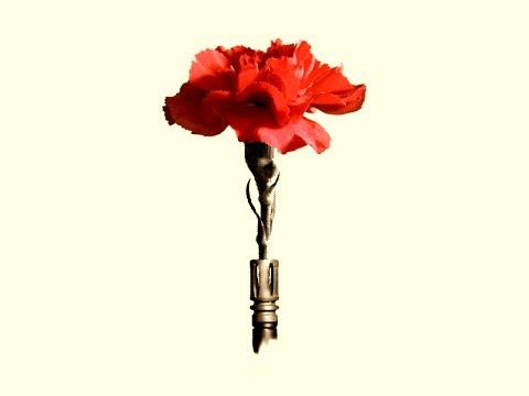 jon-eric's class Hot Topics: the carnation revolution (introduction)
