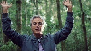 """I'm Alive"" Brasil: The Floresta da Tijuca Sessions"