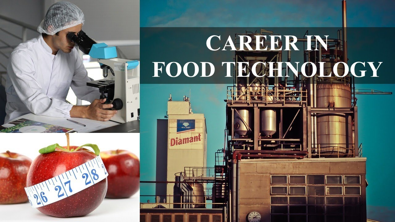 What Does a Food Engineer Actually Do?