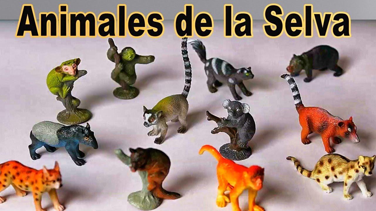 Ingles Para Niños Animales De La Selva Tropical Video Educativo