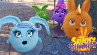 Солнечно Зайчики - Кто сильнее?    Забавные мультфильмы для детей   WildBrain
