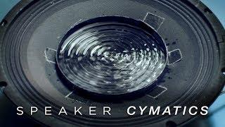 Cymatics: Speaker Dish