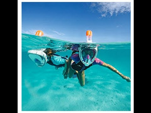 20 Reasons I bought aTribord Easybreath Snorkel Mask & 8 bad ones not to