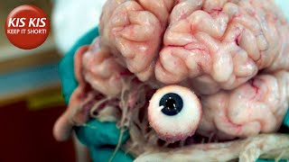 Experiment on a human brain   A Living Soul - Short film by Henry Moore Selder