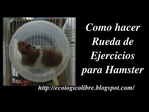 Como hacer Rueda de Ejercicios para Hamster u otros Roedores.