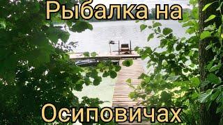 Рыбалка на Осиповичском водохранилище Ловля леща на фидер Рыбалка в Беларуси
