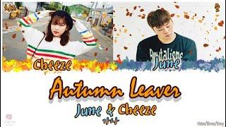 june ��� autumn leaves feat cheeze ������ han rom eng lyrics ������