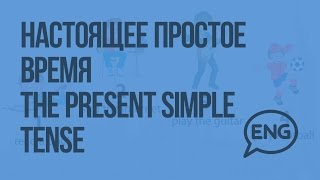 Настоящее простое время The present simple tense. Видеоурок по английскому языку 2 класс