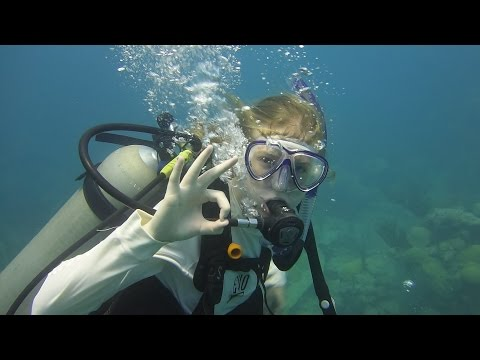 2016 VTVLC Marine Biology Program - Bermuda Video