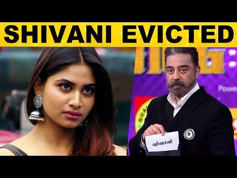 Balaji-க்கு பெரிய ஷாக்! – Bigg Boss வீட்டில் இருந்து வெளியேறிய ஷிவானி | Shivani Evicted 😱