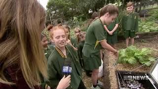 Subpod at Camdenville Paddock on Channel 9 News Sydney