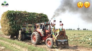 Tractor Stunt | Belarus 510 Ford 4000 MTZ50 Pulling out Maize loaded Trailer
