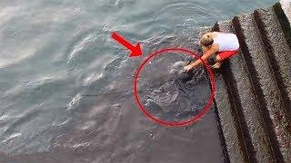 Мальчик просто кормил рыбок в море.  Как вдруг, на поверхность выплыло это!..