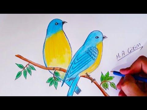 Kus Cizimi How To Draw Eastern Bluebirds Step By Step Youtube