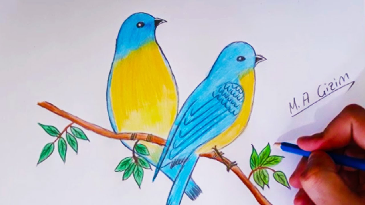 Kus Cizimi How To Draw Eastern Bluebirds Step By Step Youtube