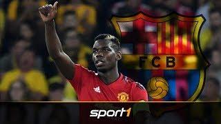 FC Barcelona macht ernst bei Paul Pogba | SPORT1 - TRANSFERMARKT