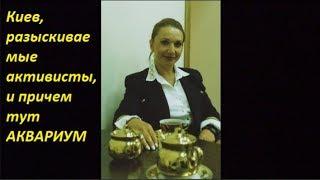 Киев разыскиваемые активисты и причем тут Аквариум.  №1427