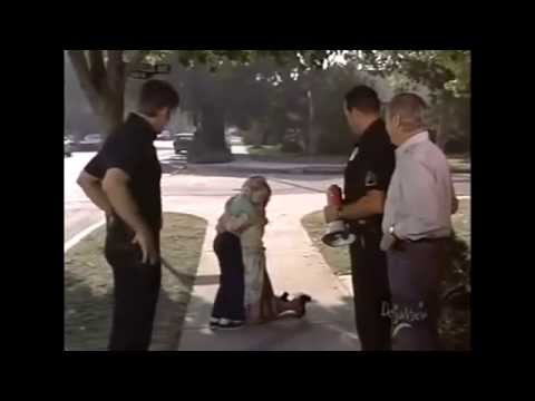 Emergency! & Adam-12: Firefighter & Police Tribute: Everyday Heroes