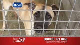 RSPCA Biggest Animal Rescue