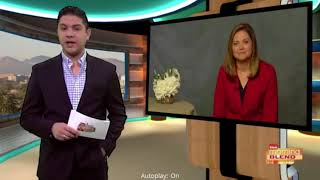 Laura Adams on ABC Tuscon - Mid-Year Financial Checkup