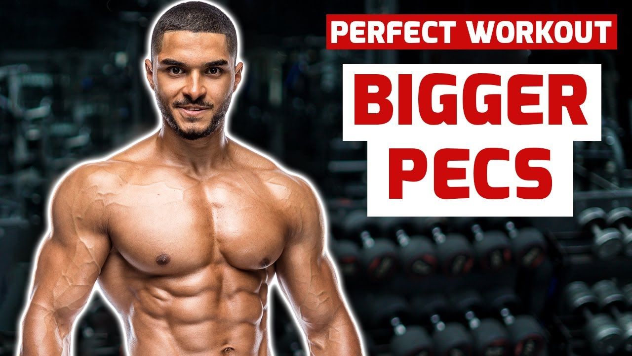 PERFECT CHEST WORKOUT FOR BIGGER PECS - YouTube