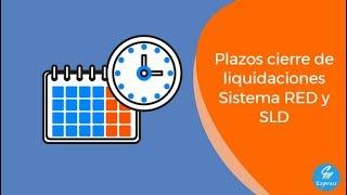 ⏱ 📆 Plazos Sistema RED y Sistema de Liquidación Directa 📆⏱
