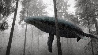 A Whale in the Forest Fantasia