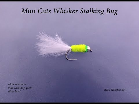TYING THE MINI CATS WHISKER STALKING BUG WITH RYAN HOUSTON 2017