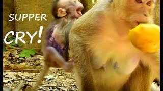 CRY CRY NO MOM ! So poor baby Lola cry loudly scare mom abandon| Lola cry scare lost mom.