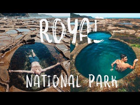 AUSTRALIA - Royal National Park