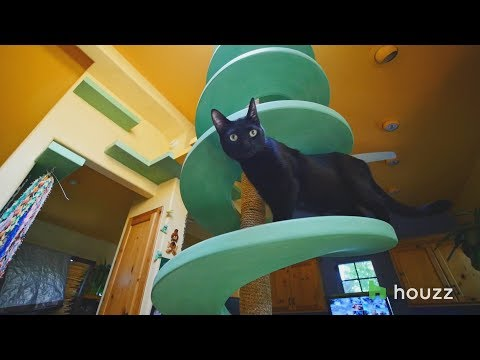 We Revisit Man's Cat Playland and our Hearts Explode Again