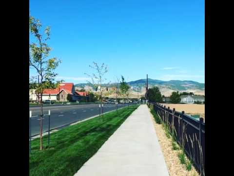 View from my morning walk in Arvada, Colorado