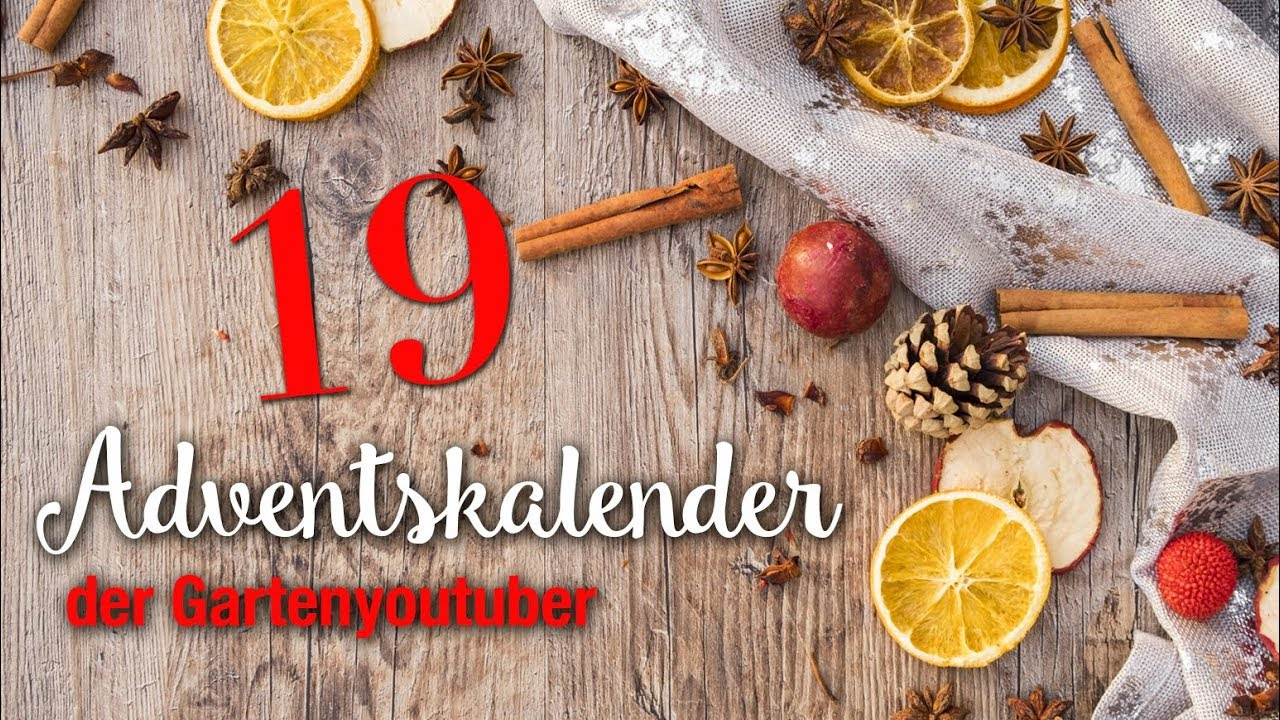 weihnachten in schweden adventskalender der garten. Black Bedroom Furniture Sets. Home Design Ideas