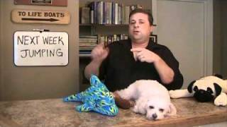 Train Your Dog Tv Episode 2 - Chewing