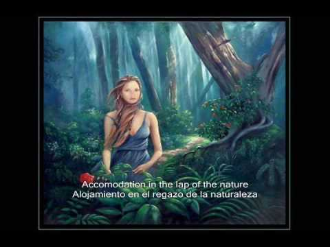 Sonata Arctica - Respect The Wilderness - Subtitulado al Español