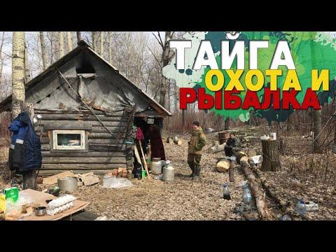 Тайга. Охота и рыбалка в Сибири. Дикая природа. Taiga. Hunting And Fishing In Siberia.