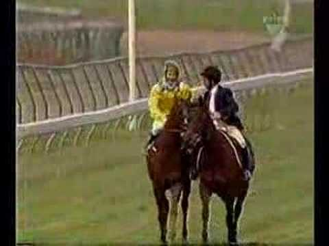 2002 Melbourne Cup (full version, incl. post-race footage)