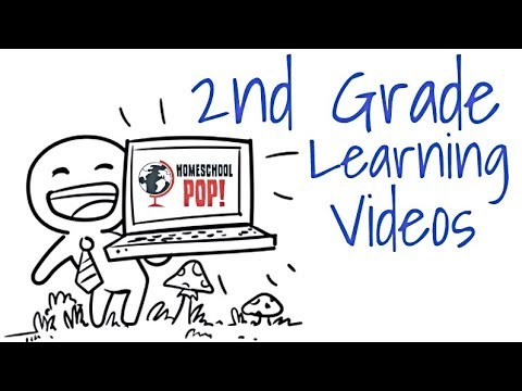2nd Grade Kids Learning Videos Compilation