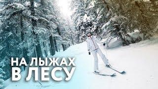 видео Зимний отдых с детьми на горнолыжных курортах