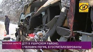 ДТП в Ушачском районе: бульдозер, зацепивший маршрутку, перевозился с нарушениями