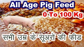Feed for pigs | feed formula for pigs | All Pigs | Making own feed at pig farm