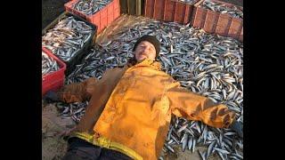 Зимняя рыбалка на корюшку в Бронке 20 02 2021 Попытка 2