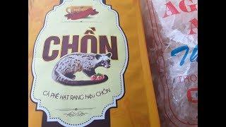 Кофе Лювак из Вьетнама, зверек питается кофейными зернами, из ка.. добывают кофе