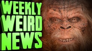 [37.27 MB] The FBI's Search For Bigfoot Revealed - Weekly Weird News
