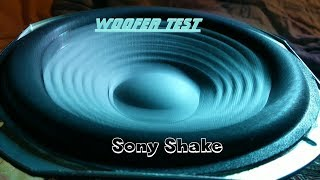Sony Shake - Woofer test /Carol Of the Bells/ 🎶🎅